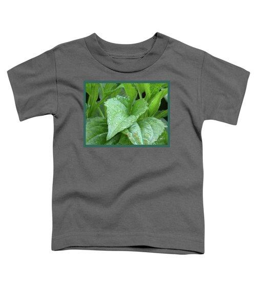 Echinacea After The Rain I Toddler T-Shirt
