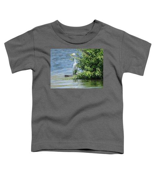 Great Egret In The Marsh Toddler T-Shirt
