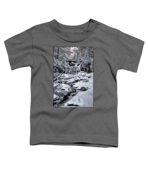 Elakala Falls Toddler T-Shirt