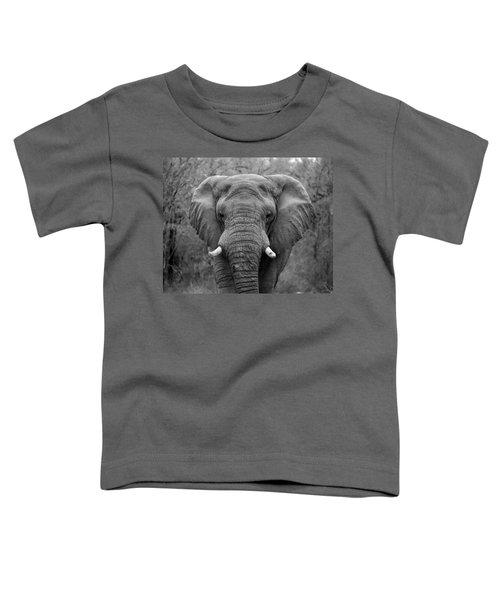 Elephant Eyes - Black And White Toddler T-Shirt