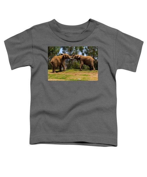 Elephant Play 3 Toddler T-Shirt