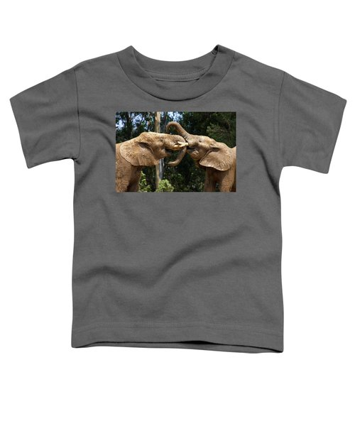Elephant Play Toddler T-Shirt