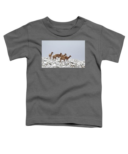 Elk Cows On The Alert In The Tetons Toddler T-Shirt