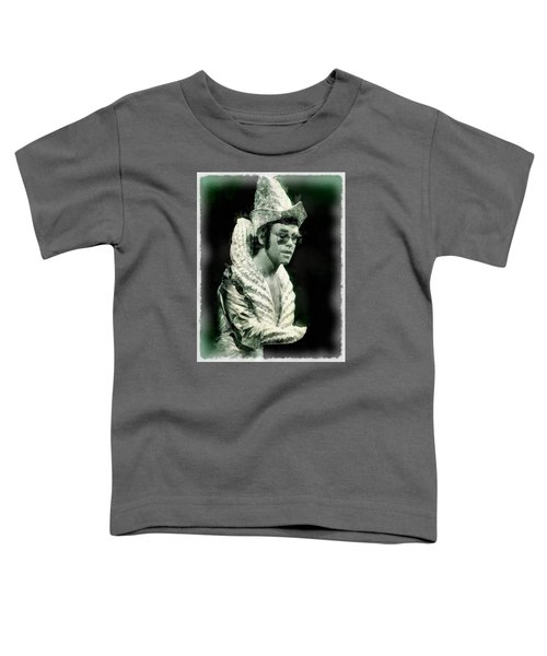 Elton John By John Springfield Toddler T-Shirt by John Springfield
