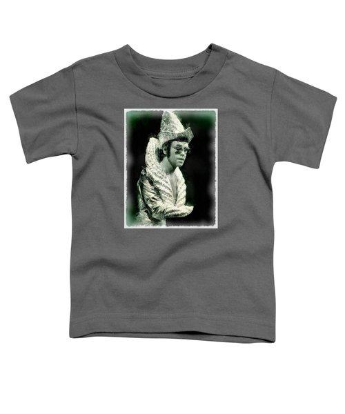 Elton John By John Springfield Toddler T-Shirt