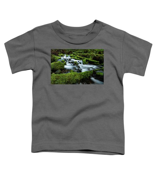 Emerald Flow Toddler T-Shirt