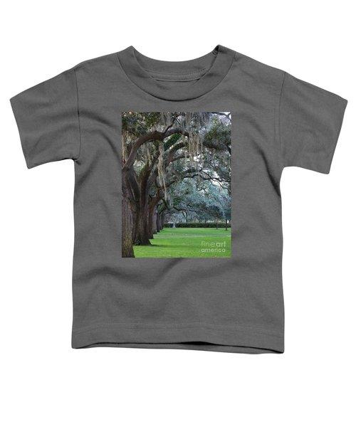 Emmet Park In Savannah Toddler T-Shirt