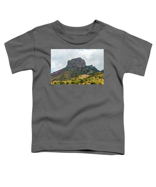 Emory Peak Chisos Mountains Toddler T-Shirt