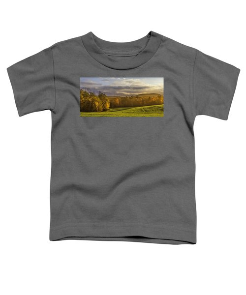 Empty Pasture - Cows Needed Toddler T-Shirt