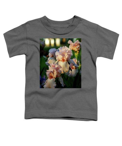 End Of Day Pink Irises 6702 H_2 Toddler T-Shirt