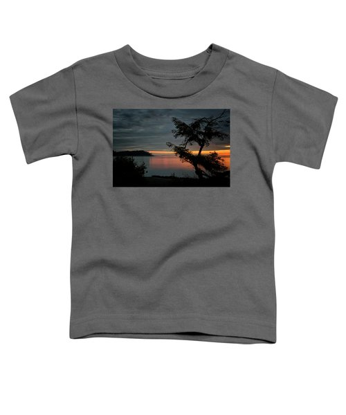 End Of The Trail Toddler T-Shirt