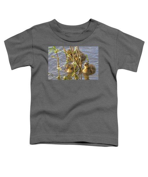 Endearing Looks Toddler T-Shirt