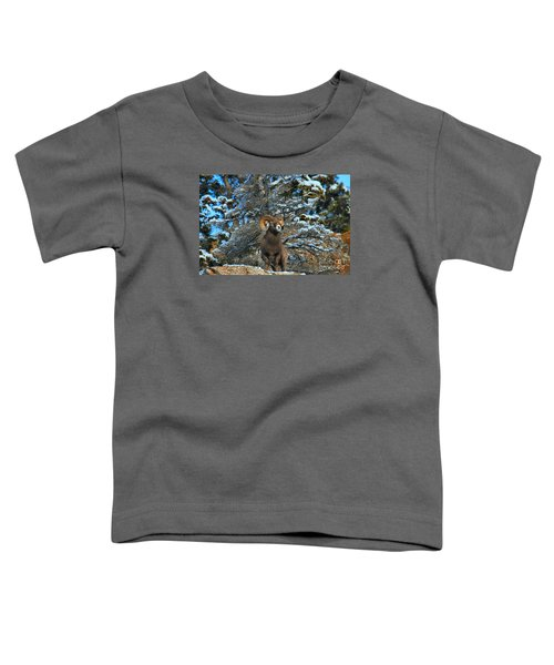 Enjoying The First Snow Toddler T-Shirt