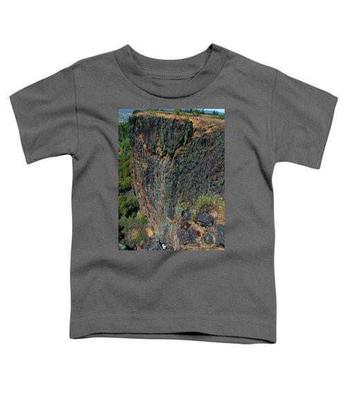 Erosion Of Flow Toddler T-Shirt
