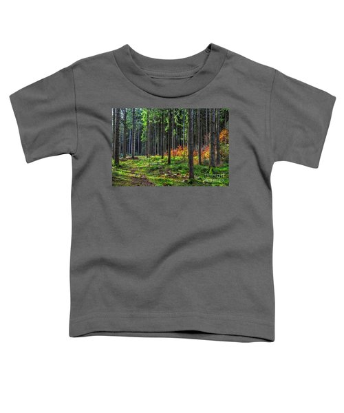 Evening Light Toddler T-Shirt