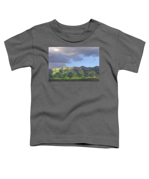 Faasummer001 Toddler T-Shirt