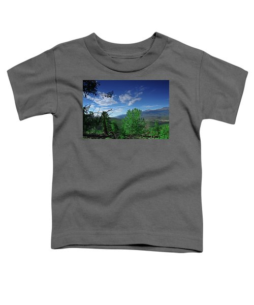 Faasummer002 Toddler T-Shirt