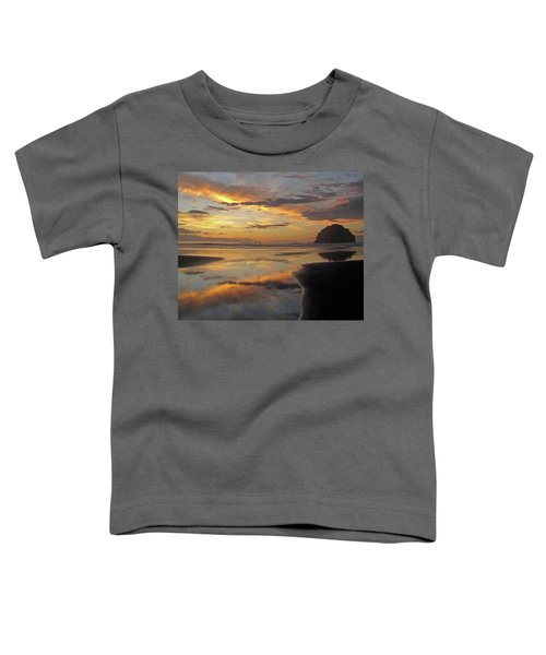 Face Rock Beauty Toddler T-Shirt