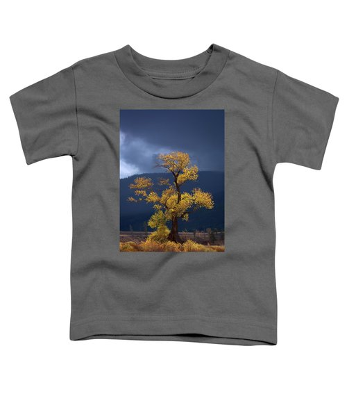 Facing The Storm Toddler T-Shirt