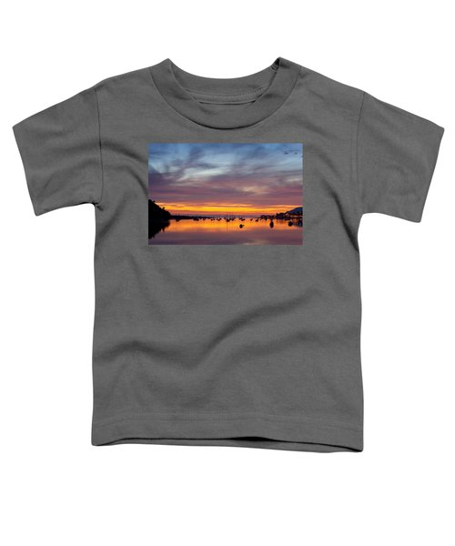 Fading Light, Conwy Estuary Toddler T-Shirt
