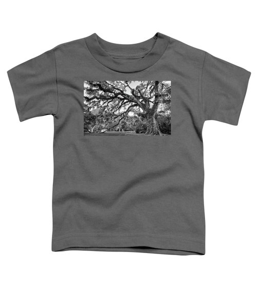 Fairchild Tree Toddler T-Shirt