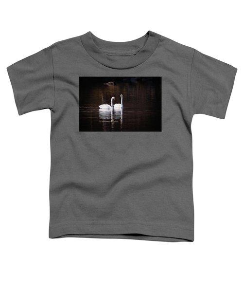 Faithfulness Toddler T-Shirt