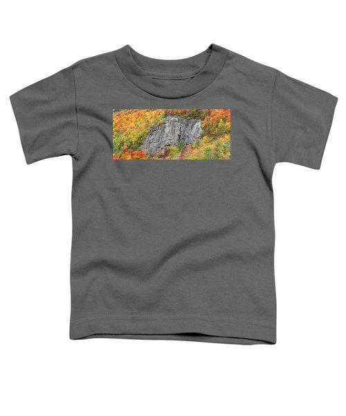 Fall Climbing Toddler T-Shirt