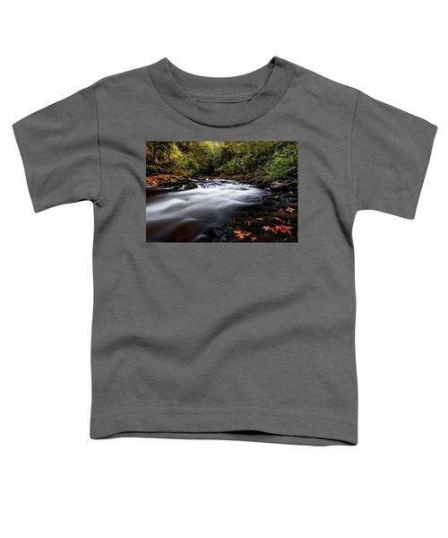Fall Color At Cedar Creek Toddler T-Shirt