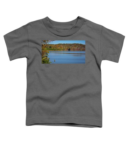 Fall Color At Lake Zwerner Toddler T-Shirt