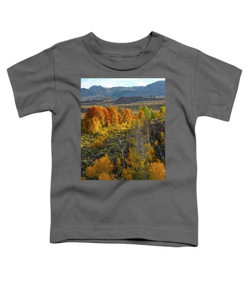 Fall Colors At Aspen Canyon Toddler T-Shirt