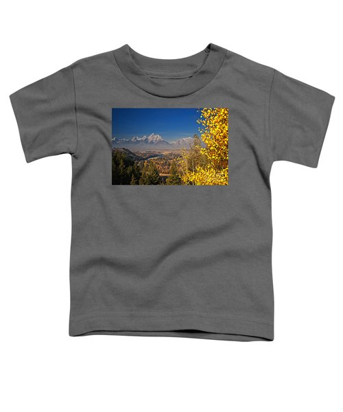 Fall Colors At The Snake River Overlook Toddler T-Shirt