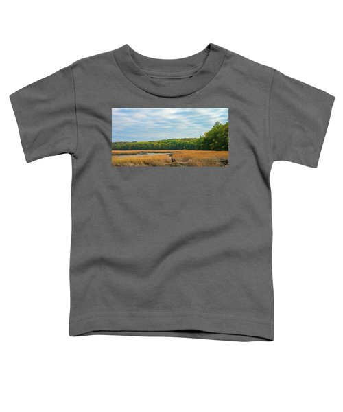 Fall Colors In Edgecomb Toddler T-Shirt