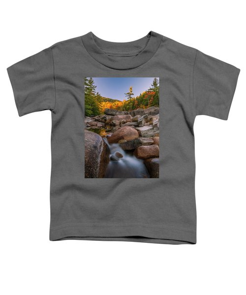 Fall Foliage In New Hampshire Swift River Toddler T-Shirt