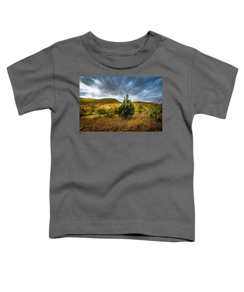 Fall In The Ozarks Toddler T-Shirt