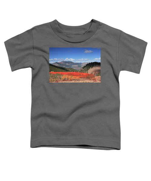 Fall In  Ute Trail  Toddler T-Shirt