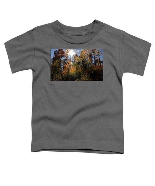 Fall Mt. Lemmon 2017 Toddler T-Shirt