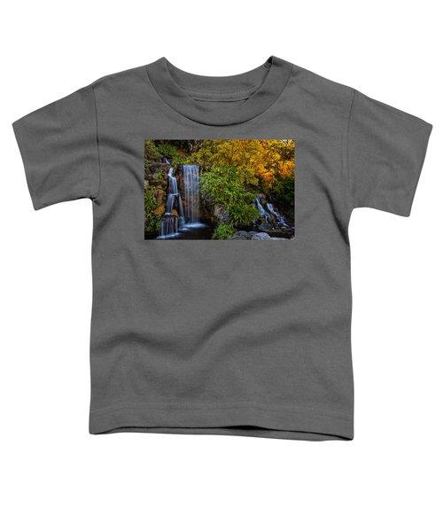 Fall Water Fall Toddler T-Shirt