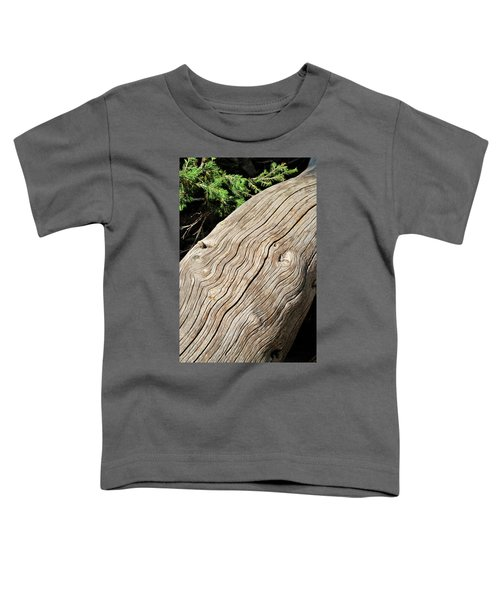 Fallen Fir Toddler T-Shirt
