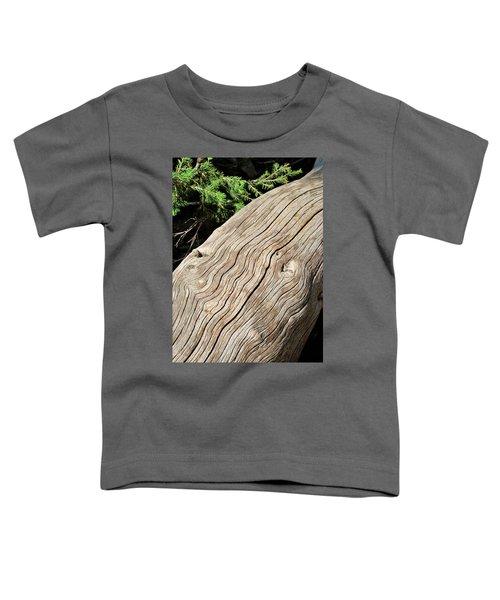 Fallen Fir Toddler T-Shirt