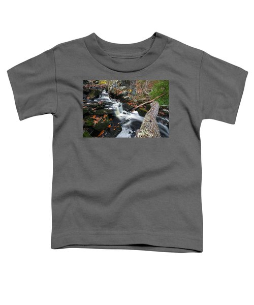 Fallen In Danforth Falls Toddler T-Shirt