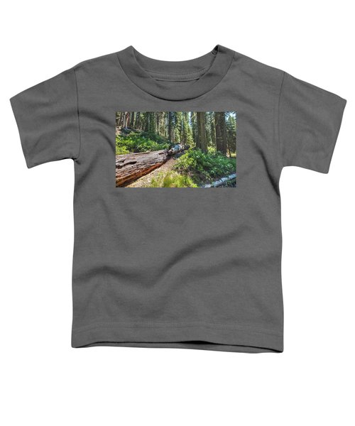 Fallen Tree- Toddler T-Shirt