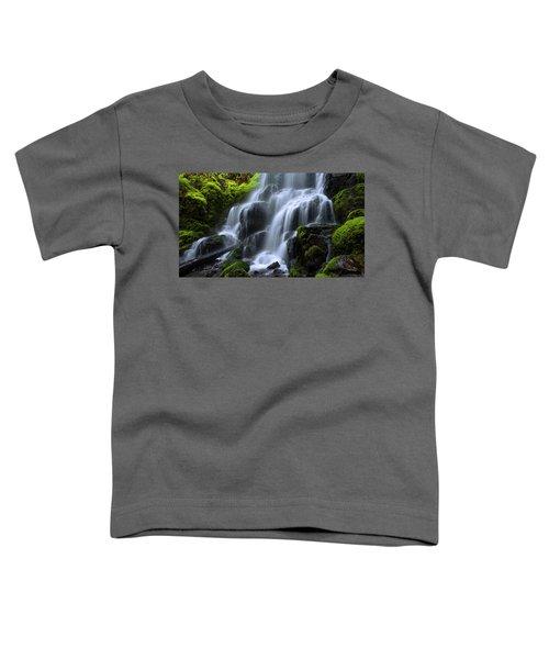 Falls Toddler T-Shirt