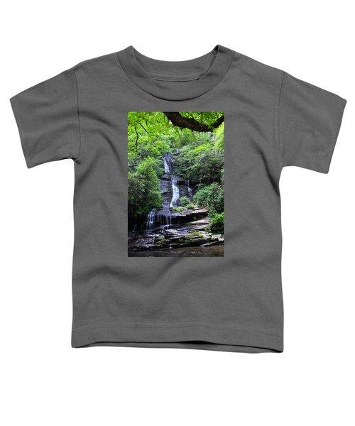 Falls Near Bryson City Toddler T-Shirt