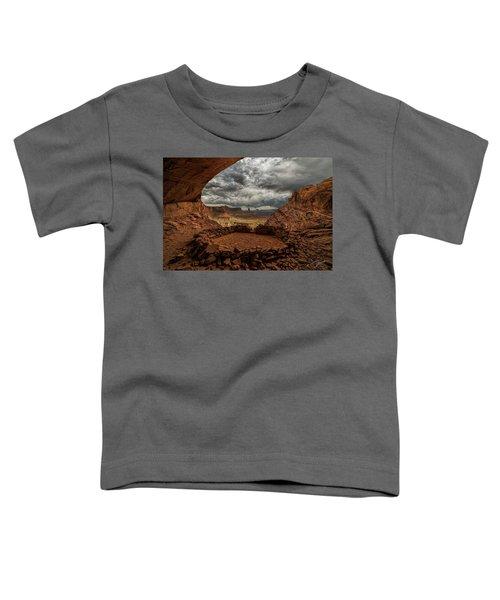False Kiva Toddler T-Shirt