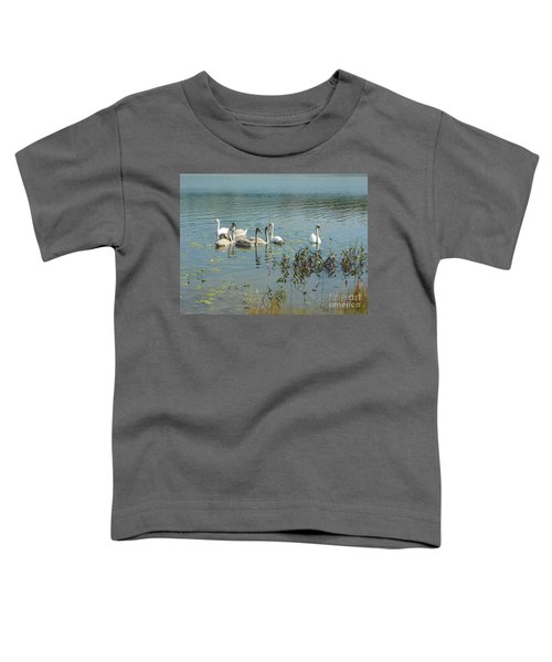 Family Of Swans Toddler T-Shirt