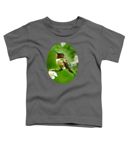 Fauna And Flora - Hummingbird With Flowers Toddler T-Shirt by Christina Rollo