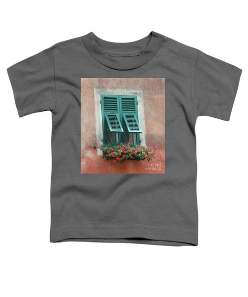Faux  Painting Window  Toddler T-Shirt
