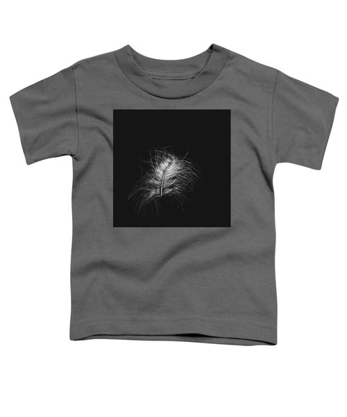 Feather 3 Toddler T-Shirt
