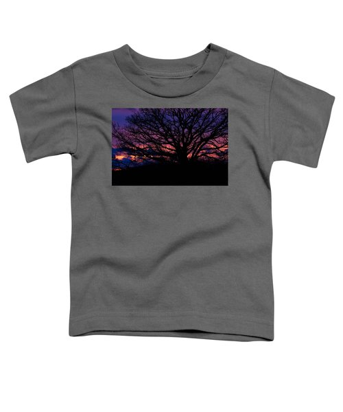 February Sunset Toddler T-Shirt