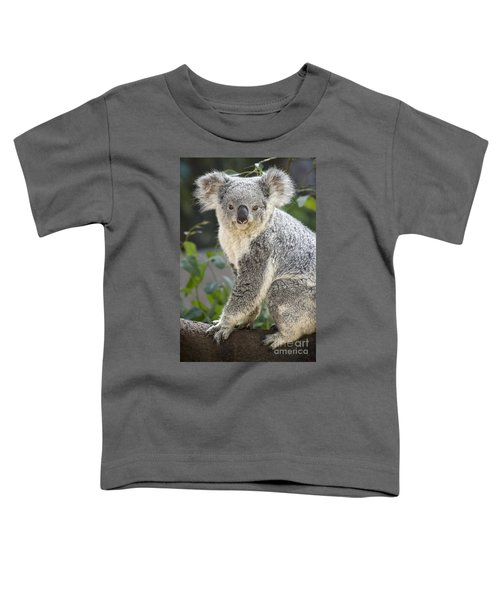 Female Koala Toddler T-Shirt by Jamie Pham